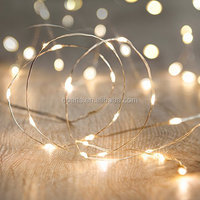 Button Battery Operated Fairy Lights with 20 Micro Warm White LEDs on Copper Wire