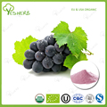 Factory supply organic grape juice powder