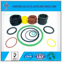 Different Color High Quality Best Price Viton Seals O Ring