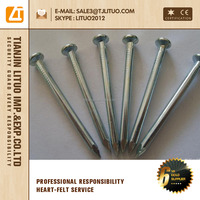 Steel Iron Nails wire staples concrete nails manufacturer in china common nail