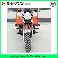 2016 Popular Heavy Load Strong Cargo Tricycle CCC 3 Wheel Tricycle