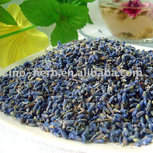 Free Sample Dried Lavender Flower for Relieving Nerve