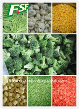 Exporting cooking frozen vegetable and fruits manufacturer