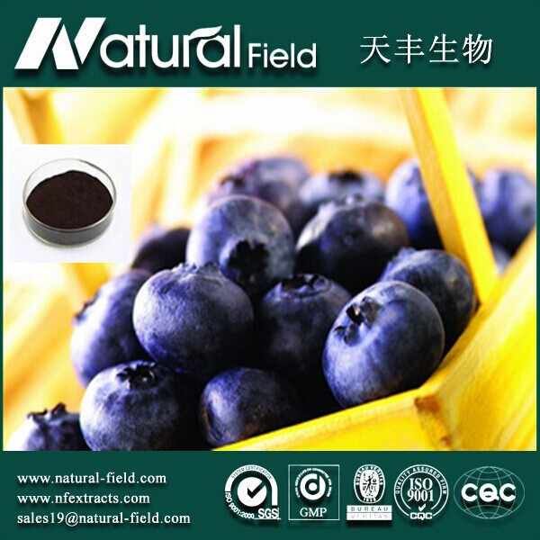100% Pure Natural Blueberry Extract Powder Anthocyanidins Bilberry extract