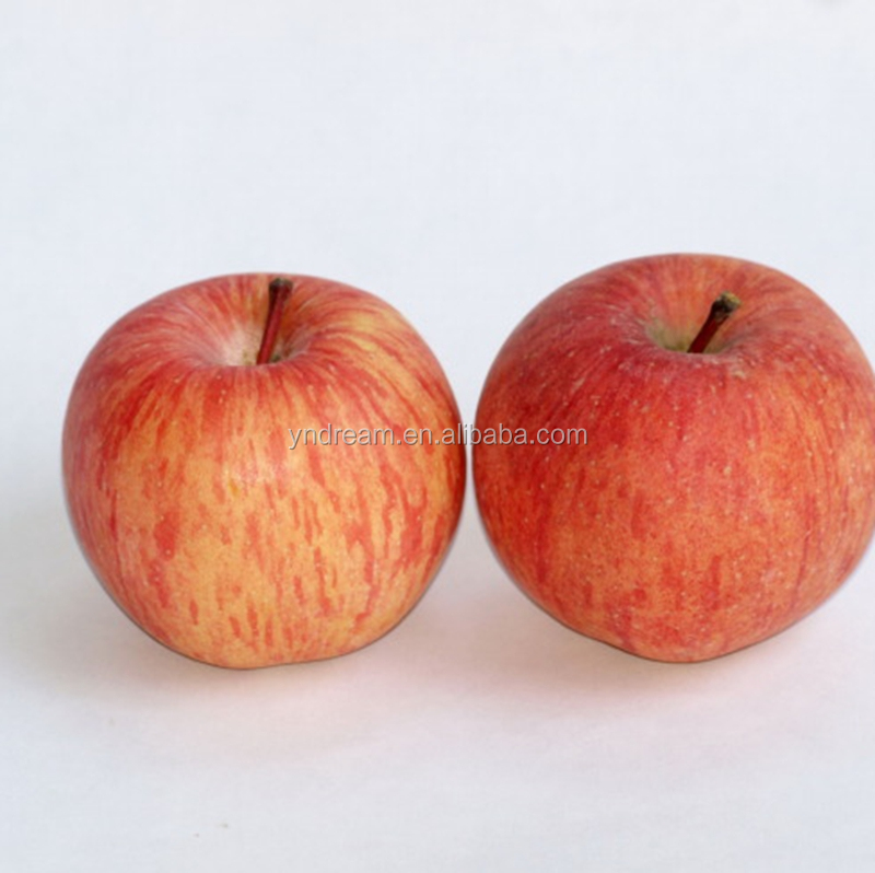 Fresh fruits red star apple with good quality for sale cheap price from China