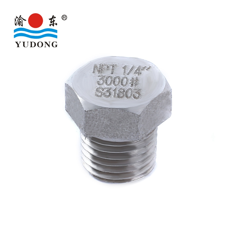 ASTM B16.11 stainless steel pipe fittings NPT hex head plug