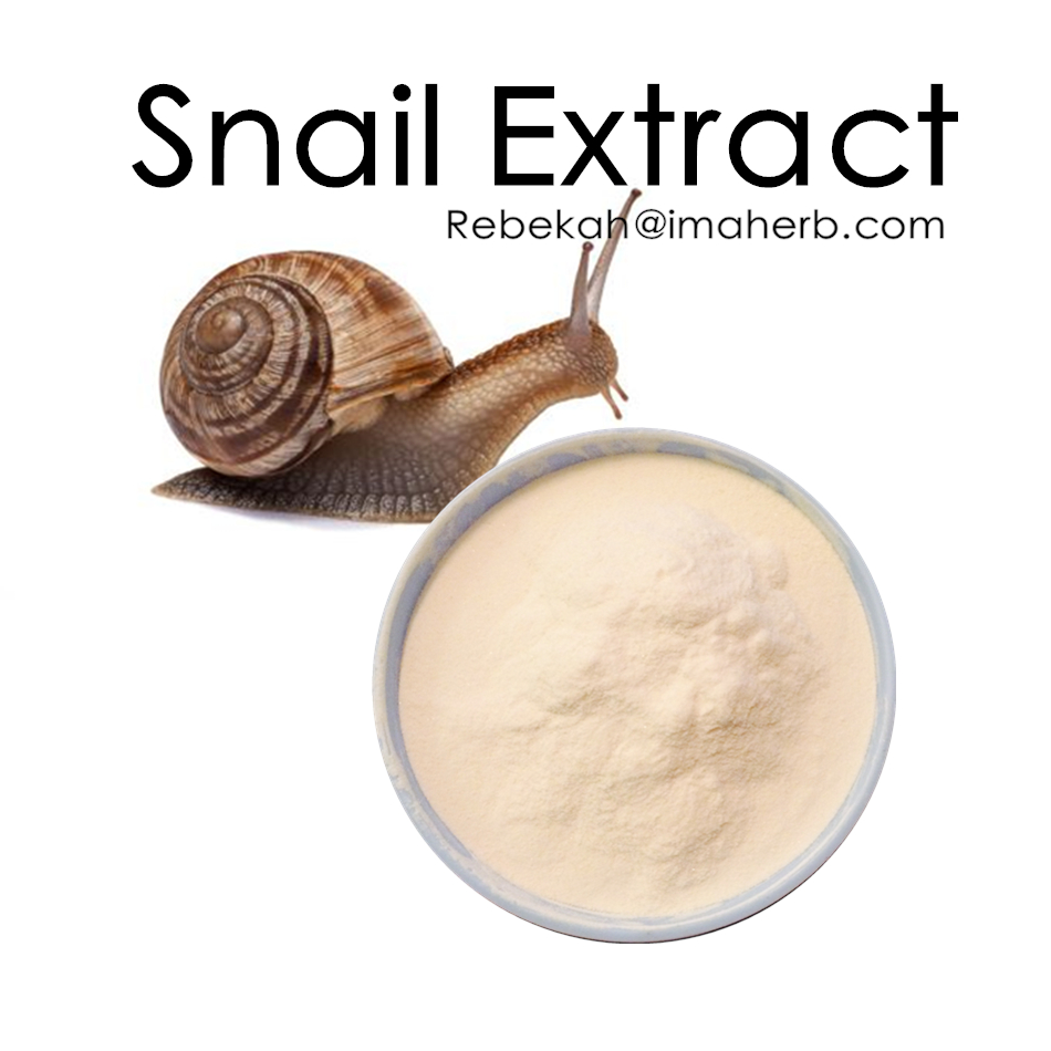 High Quality Organic Pure snail extract powder
