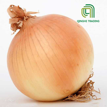 2017 wholesale certificated organic cheap fresh yellow onion for import buyers