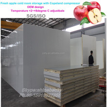 Fresh apple cold room storage with Copeland compressor