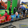 Lovely shape and enjoy travel tourist train /track train for outdoor use mall train