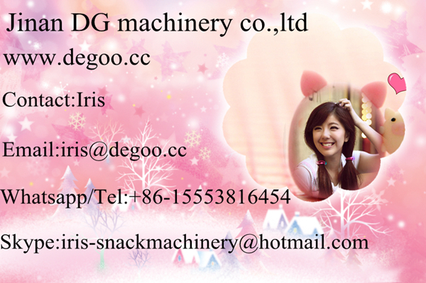 Jinan DG Continuous automatic fish/pet pellet feed snack making double screw extruder