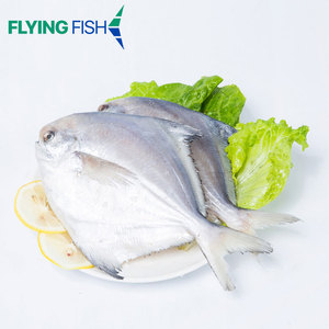 Factory supplier seafood good price frozen pomfret silver fresh