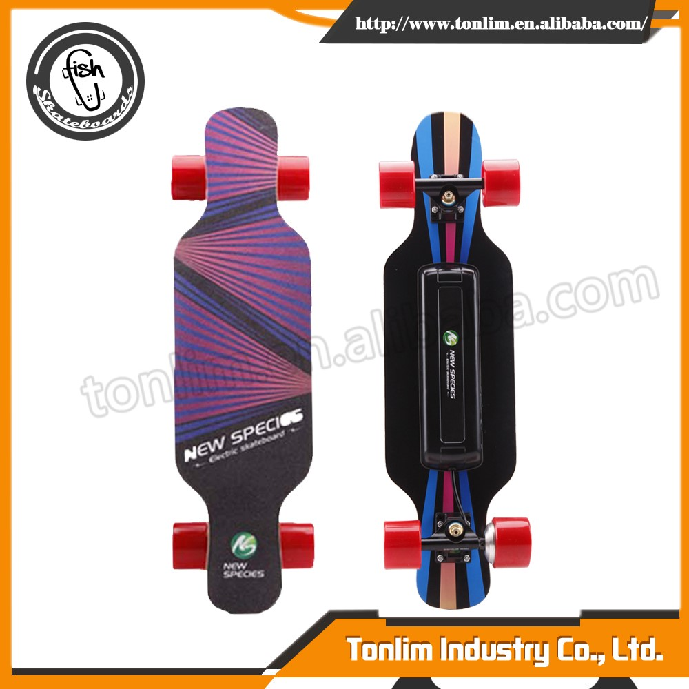 replaceable battery electric skateboard kit