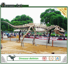Theme park dinosaur fossil and skeleton
