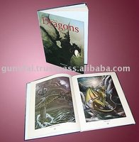 Hard Cove Dragons Pillow Story Photo Book