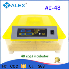Automatic love birds egg incubator cheap finch egg incubator for sale