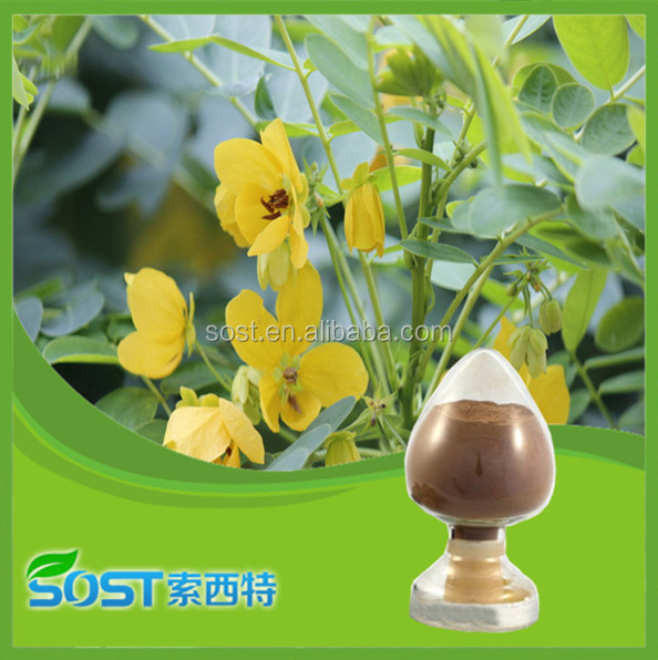 2014 new products cassia seed extract powder
