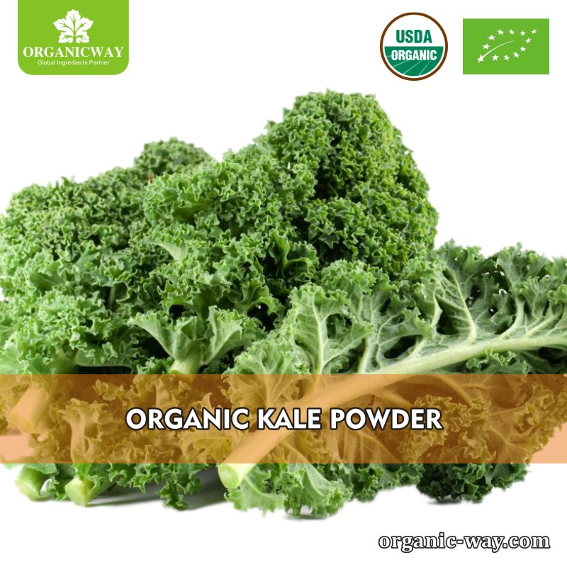 Factory price kale
