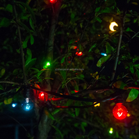 Holiday\Wedding Decoration indoor\outdoor E12 String Lights UL\CUL