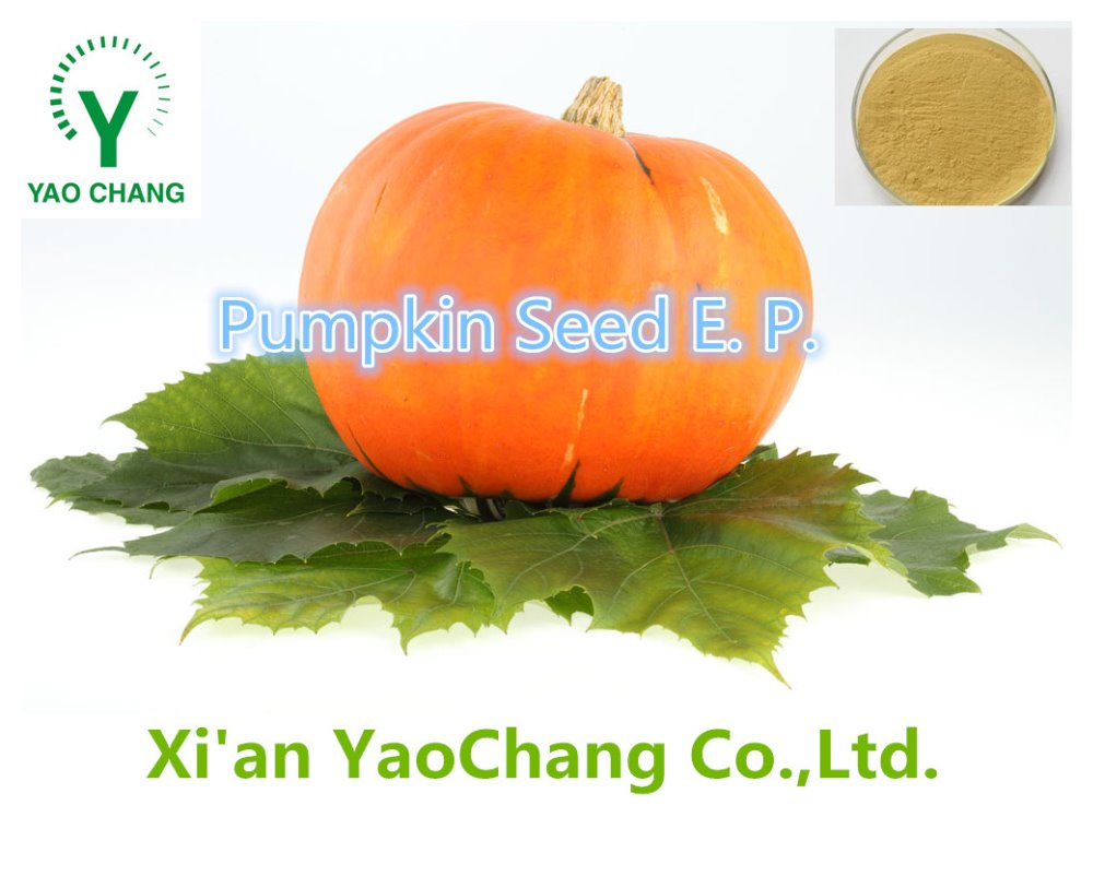100% Pure Natural High Quality Pumpkin Seed Extract Powder