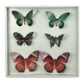 Colorful 3D Butterfly Sticker Decal Wall Art Design Room Decor