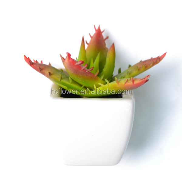 Modern Home Decor Mini Succulent Artificial Plants with Ceramic Pots