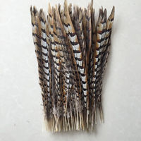 wholesale natural carnival reeves pheasant tail feathers