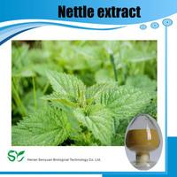 Buy Natural Stinging Nettle Seeds Powder 250 gr Herbal Slimming ...