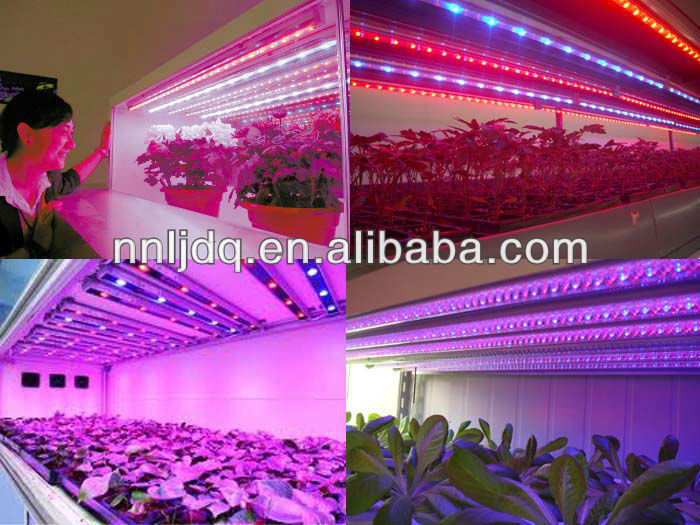 4ft 1200mm t8 led grow tube light full spectrum for aerogarden in China alibaba com
