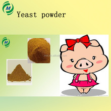 Poultry feed additive Yeast Powder 60% for animal feed