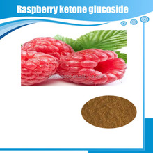 Natural Raspberry Ketone Glucoside Extract Powder