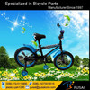 High quality outdoor kids sports bike /children bicycle for sale/child bicycle prices