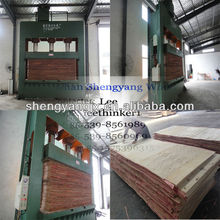 Plywood Cold Press/Prepress for Making plywood with hydraulic system