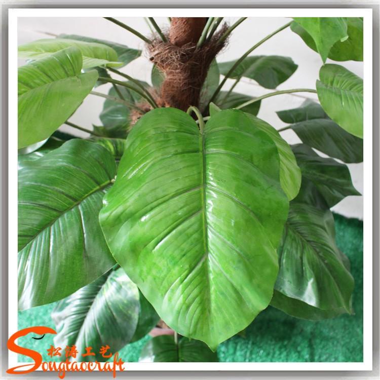 Tipos de plantas artificiales de hoja perenne follaje for Plantas hoja perenne