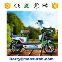 PT-E001 2014 New Design Popular Folding Easy Portable EEC V1 Electric Motorcycle