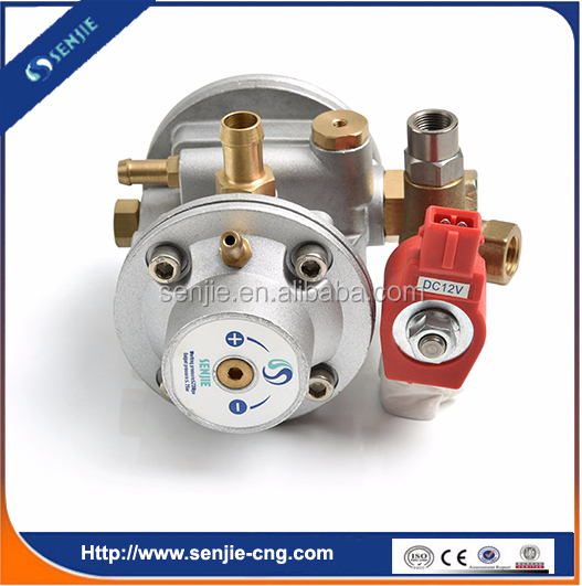 High quality brc lpg for conversion kit