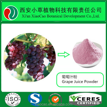 Factory Price Grape Juice Powder