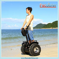 Escooter 2 wheels self balance 500w sea scooter with light on body