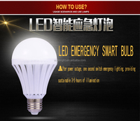 HOT SALE 12W RECHARGEABLE LED BULB LIGHT BATTERY BACKUP EMERGENCY DC 12V AC220V