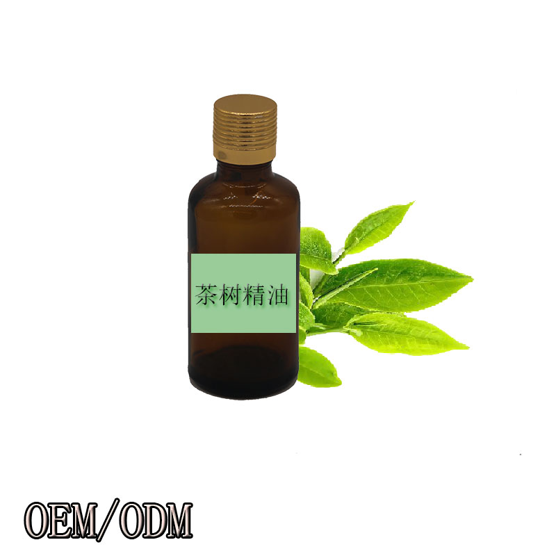 OEM/ODM Natural Tea Tree Camellia Seed Oil