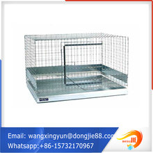 child and mother rabbit rabit cage(factory)