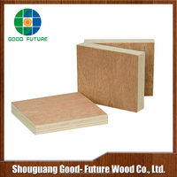 High quality ordinary commercial laminated plywood sheets