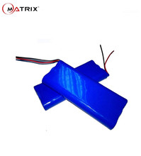 Quality Assurance lithium ion 60v 2.2ah battery pack for electric scooter