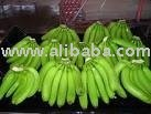 fresh green calvendish banana