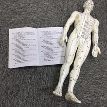 Chinese Human Acupuncture Model 178 cm Man Body Model for meridian and extraordinary points