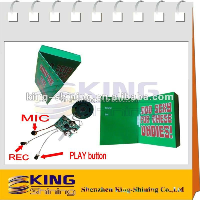 Custom voice recorder for gift box/speaker