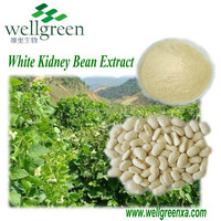 100% Natural organic powder phaseolin 2% white kidney bean extract/Phaseolus vulgaris L