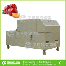 CL-I manufacturer plum fruit stone removing machine