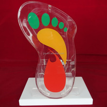 Heat bending Clear acrylic charity box /Charity cash box
