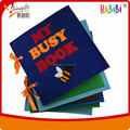 felt book / busy book for kids
